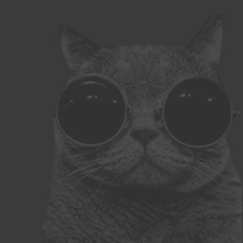 Gato envío gratis