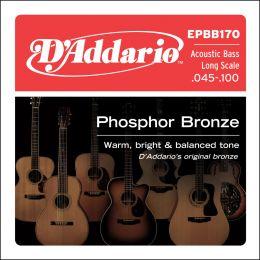 D'Addario EPBB170 Phosphor Bronze Acoustic Bass, Long Scale [45-100]