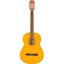 Fender ESC105 Educational Series WN