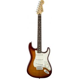 Fender Standard Stratocaster RW Plus Top Tobacco Sunburst