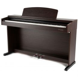 Gewa DP 300G Palisandro Piano digital